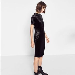 Zara Black Velvet Bodycon Dress